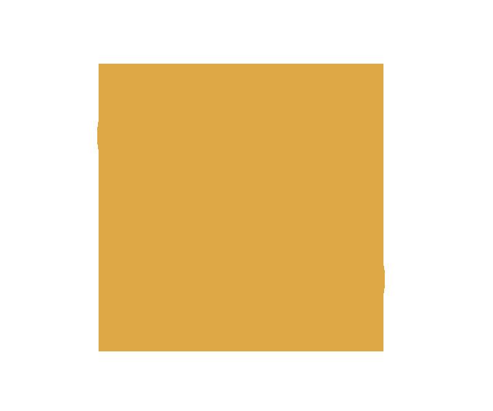 Zajęcia Skype